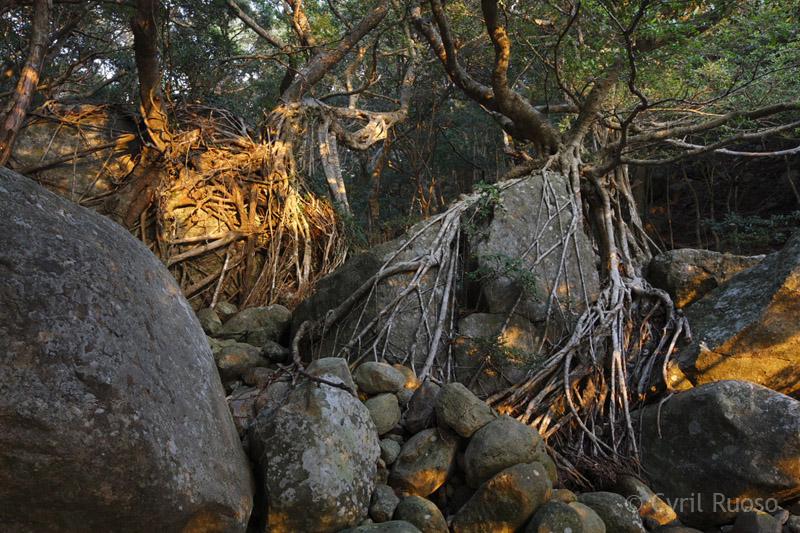Site rencontre nature